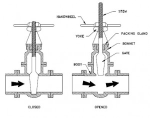Rising-stem-of-valve